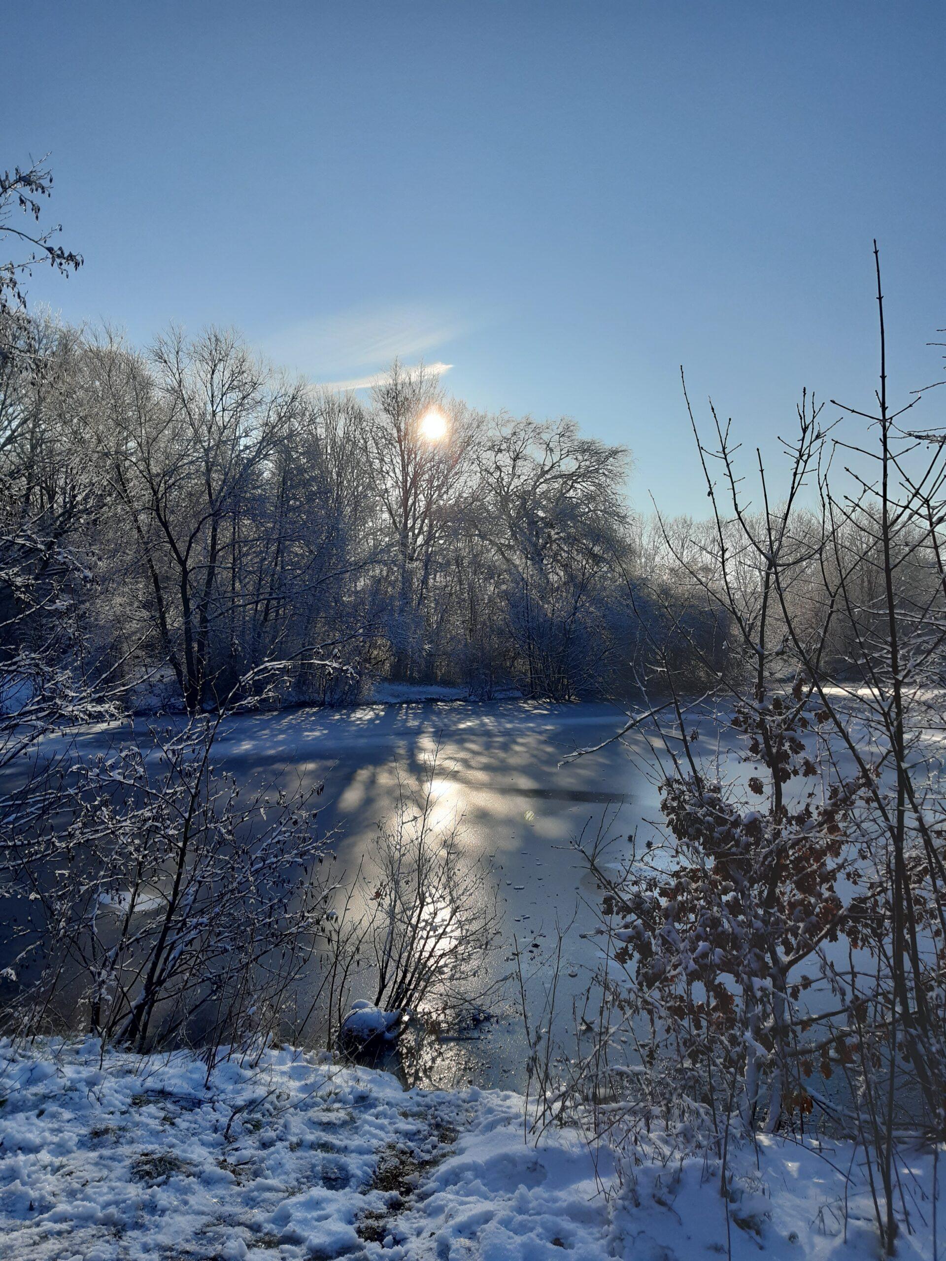 Foto eines Oldenburger Sees im Schnee - die Sonne scheint durch die Bäume